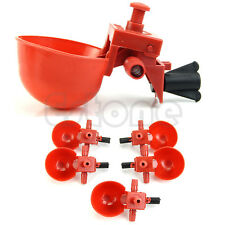 Automatic Bird Coop Feed Poultry Chicken Fowl Drinker Water Drinking Cups 5Pcs