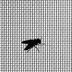 Insect Mesh Screening PVC Coated Woven Fibreglass Fly Bug Door Window Screen