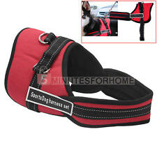 Adjustable Safety Car Seat Belt Sports Walking Pet Dog Chest Harness Set Red S