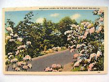 Linen Postcard Virginia Swift Run Gap C Teich New c1935