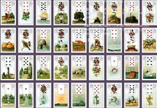Divination Lenormand Tarot Madame Lenormand 36 fortune telling cards