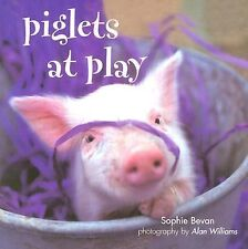Sophie Beven - Piglets At Play (2011) - Used - Trade Cloth (Hardcover)