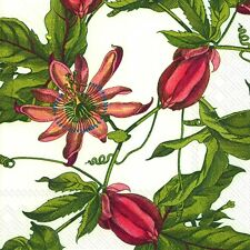 PINK PASSION flower Caskata Studio paper lunch napkins new 20 in pack 33cm