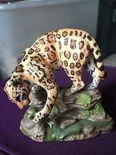 NWF NATIONAL WILDLIFE FEDERATION JAGUAR THE GREAT CATS OF THE WORLD