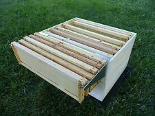Bee Frame Holder Hive Perch Beekeeping Caddy, 5 Frame, Made in & Ships Free USA!