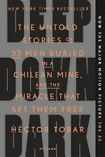 Deep Down Dark: The Untold Stories of 33 Men Buried in a Chilean Mine, and...