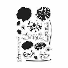 2017 Hero Arts COLOR LAYERING POPPY clear stamp set CM144 flower