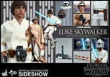 Star Wars Hot Toys Luke Skywalker Tatooine 1/6 Scale Figure Mark Hamill New