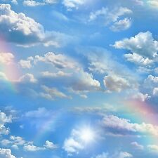 Rainbow, Blue Skies, Clouds, Landscape Medley, Elizabeth's Studio (By 1/2 yd)