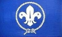 BOY SCOUT BSA Fleur De Lis Logo Novelty Polyester FLAG WALL BANNER 3' x 5' New