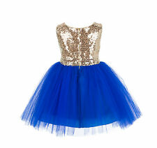 Sequin Mesh Flower girl dress Pageant Birthday Girl Special Occasions Sizes 2T-8