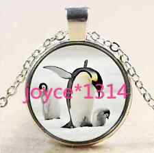 Cute penguins Cabochon Tibetan silver Glass Chain Pendant Necklace ^XP-2523