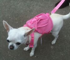 Pink Rucksack Dog Harness With FREE Lead - Chihuahua Puppy Yorkie Small Dog