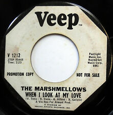 MARSHMELLOWS 45 When I Look At My Love / I Don't  PROMO Girl Group POPCORN e5983
