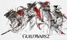 "Guild Wars 2 GW2 Game Poster 2 on Huge Silk Fabric Canvas 40""x 24"""
