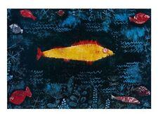 Paul trifoglio del pesce d'oro poster stampa d'arte immagine 80x60cm-SPEDIZIONE GRATUITA
