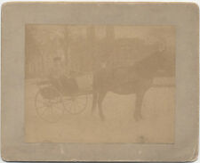 PHOTOGRAPH OF YOUNG BOY RIDING A HORSE DRAWN BUGGY -VINTAGE ORIGINAL PRINT