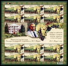 Weintrauben. Weinbau. Sukholimansky-Traube. Zd-Bogen. Ukraine 2009
