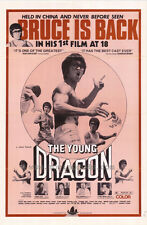 THE YOUNG DRAGON Movie POSTER 27x40 Bruce Lui Yang Sze Lo Lai Wo Ching Yung Man