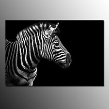 Canvas Print For Living Room Zebra Head Wall Art Canvas Painting-No Frame