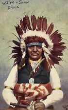 """TUCK Postcard OILETTE 2171 """"Indian Chiefs"""" White Swan Sioux Posted"""