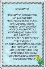 FRIDGE MAGNET MY COUNTRY WALES Lovely poem daffodils souvenir Wales