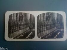 STC238 Espagne Barcelona coeur de la cathedrale stereoview photo STEREO