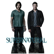 SAM & DEAN WINCHESTER Supernatural Ackles CARDBOARD CUTOUT Standup Standee F/S
