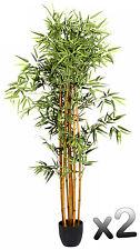 Lot de 2 plantes artificielles Bambou Pot Hauteur 180 cm