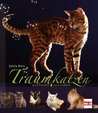 Traumkatzen Alle Rassen Farben Arten Rasseband Katzen Bildband Zucht Buch NEU