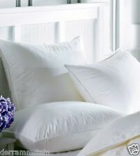 (2) Standard Feather Pillows - Custom Made In Our Shop! Made In USA  Down Pillow