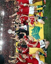 British and Irish Lions 2013 Tour Winners Celebrate 10x8 Photo