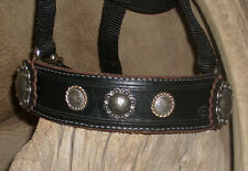 Mini Pony Bronc Halter, Black Leather Nose Band, Old Silver Berry Conchos. G&E