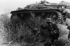 German StuG III Assault Gun Stalingrad Russia Sept 1942 World War 2, 6x4 Inch