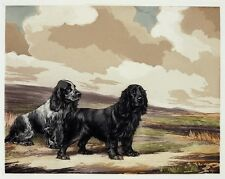 REUBEN WARD BINKS Vintage 1934 Color Aquatint Etching of Dogs COCKERS Spaniels