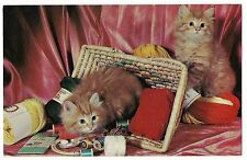 THIS COULD BE QUITE A YARN Kittens Sewing Basket PORT AUSTIN MICH CAT Postcard