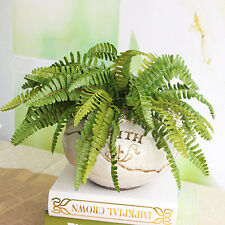 Hot New Fishtail Pine Fern Fake Plant Artificial Leaves Office Decor Decoration
