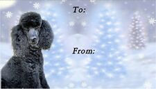 Poodle Christmas Labels by Starprint - No 1