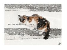 "ORIGINAL ACEO PAINTING ""PATCHES"" FARM CAT, SNOW LANDSCAPE PRINT By Anthony D"
