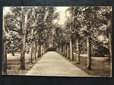 RP Vintage Postcard - Oxfordshire #11 - Trinity College, Lime Tree Walk 1926