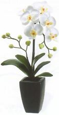 "ARTIFICIAL 20"" ORCHID FLOWER ARRANGEMENT SILK PLANT CERAMIC POT TROPICAL FLORAL"