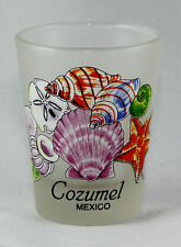 COZUMEL MEXICO SEA SHELLS FROSTED SHOT GLASS