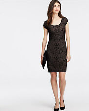 Ann Taylor – Womens Medium (8-10) Black Lace Sweater Dress $139.00