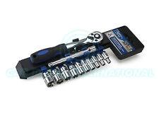 FORD strumenti 12pc 1/4 drive socket & Ferrovia Set-PRO 72T CRICCHETTO (12 Pezzi)