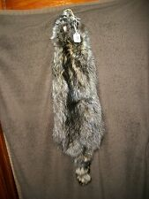 NICE tanned RACCOON HEAVY fur pelt skin taxidermy 4 FEET CLAW mount RF11 CABIN