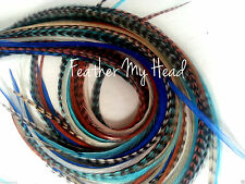 "16 Long Whiting Euro Feather Hair Extension Cowboys And Angels Mix 9""-12"" Long"