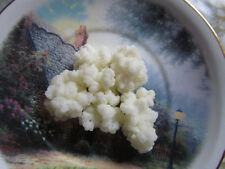 1 tbsOrganic Milk Kefir Grains - Tibetan Milk Mushroom - Probiotic+ instructions
