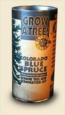 COLORADO BLUE SPRUCE GROWING TREE KIT - GROW SPRUCES FROM SEED - SCIENCE PROJECT