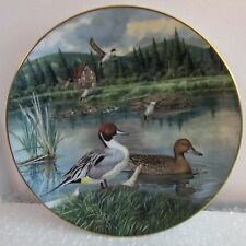 """The Pintail, 8 1/2"""" Knowles Decorative Duck Plate, Jerner, 1986, #1292C, Signed"""