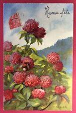 CPSM. 1931. Illustrateur HALLER. Fleurs de Trèfle Rouge ?